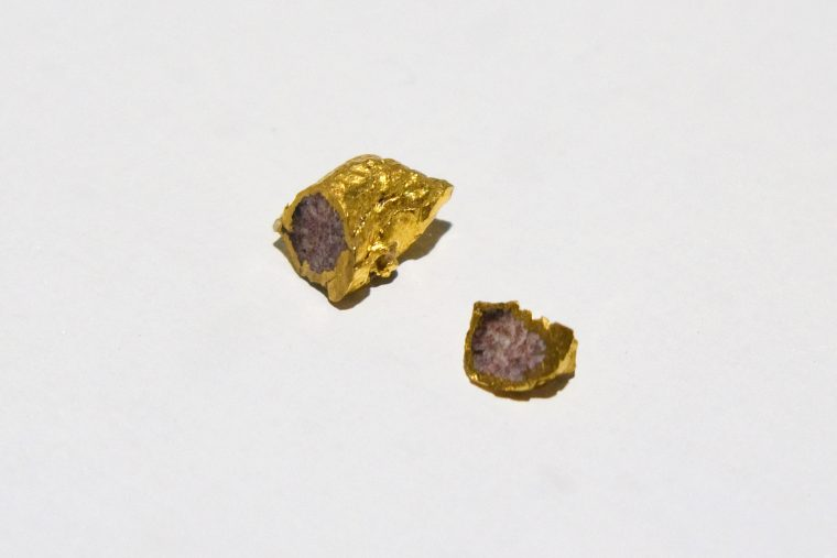 The Generic Stone, Synthetic granite, 2x3 mm, inside the golden capsule it was produced in.
